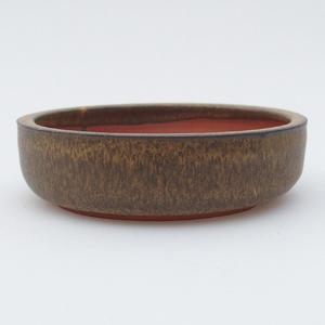 Ceramiczna miska z bonsai