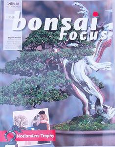 Bonsai focus - angielski nr 145