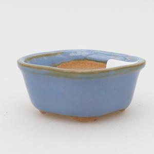 Mini miska z bonsai