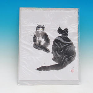 Kaligrafia - plotki o kotach