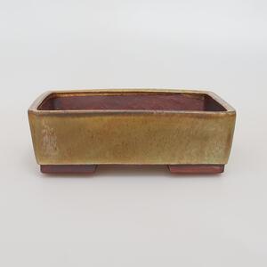 Outdoor bonsai - Klon Buergerianum - Klon Burger VB2019-26721
