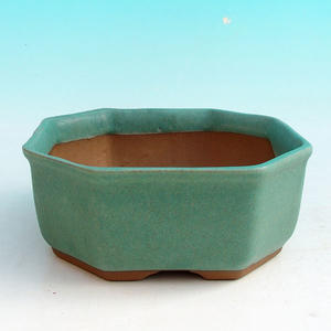 Ceramiczna miska bonsai H 13 - 11,5 x 11,5 x 4,5 cm