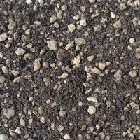Gleby na kokedamy