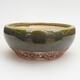 Outdoor bonsai - grab - Carpinus betulus - 1/5