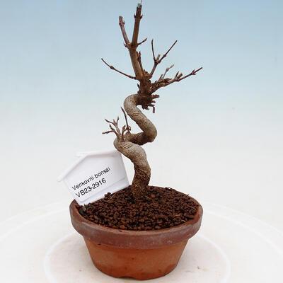 Ceramiczna miska bonsai 21 x 17 x 7 cm, kolor zielony - 1