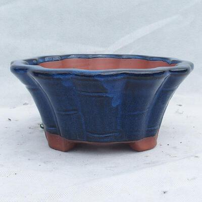 Miska Bonsai 22 x 22 x 10 cm, kolor niebieski - 1