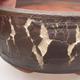 Ceramiczna miska bonsai 15 x 15 x 6 cm, kolor popękany - 1/4