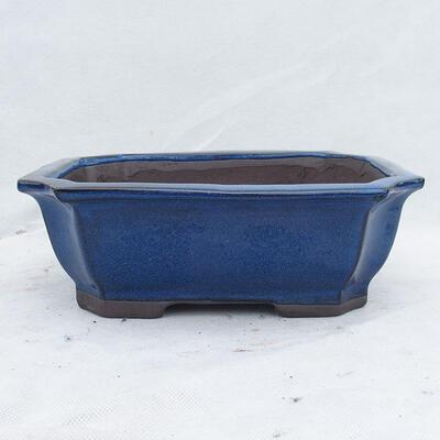 Miska Bonsai 24 x 19 x 8,5 cm, kolor niebieski - 1