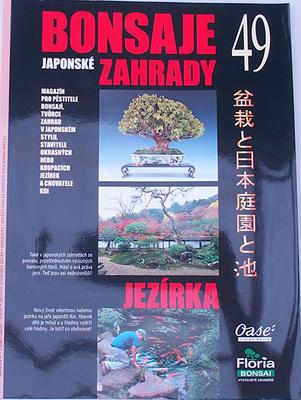 Bonsai i ogród japoński No.49 - 1