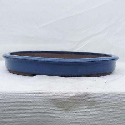 Miska Bonsai 43 x 35 x 6 cm, kolor niebieski - 1