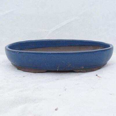 Miska Bonsai 36 x 25 x 6,5 cm, kolor niebieski - 1