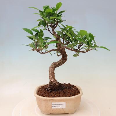 Ceramiczna miska bonsai 18 x 18 x 7 cm, kolor spękany czerwony - 1