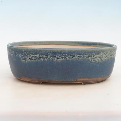Miska Bonsai 31 x 24 x 10 cm, kolor niebieski - 1