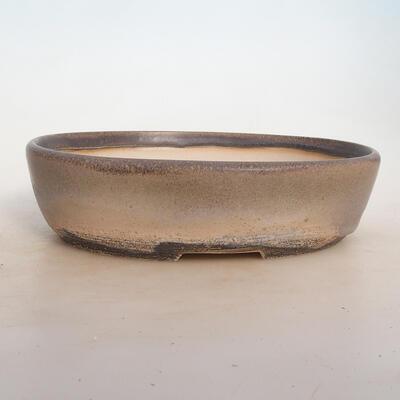 Miska Bonsai 25 x 19 x 6,5 cm, kolor szaro-beżowy - 1