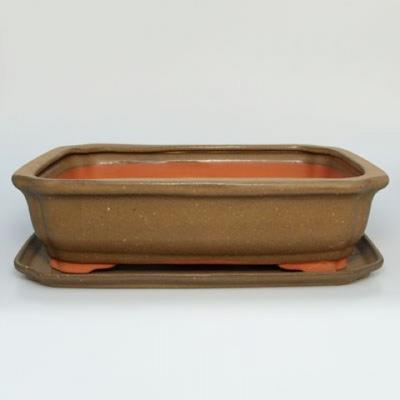 bonsai miska i zasobnik wody H 20 - 1