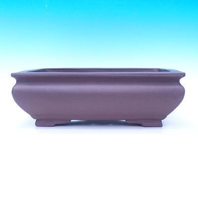 Miska Bonsai 50 x 37 x 18 cm - 2