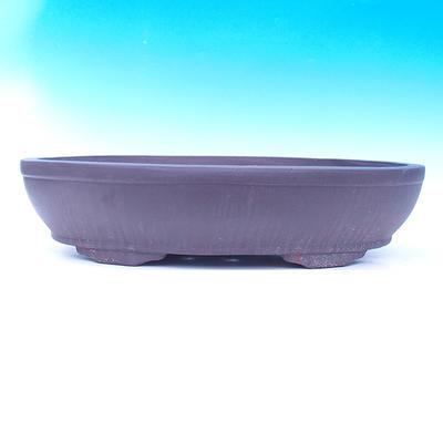 Miska Bonsai 60 x 43 x 14 cm - 2
