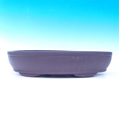 Miska Bonsai 50 x 35 x 10 cm - 2