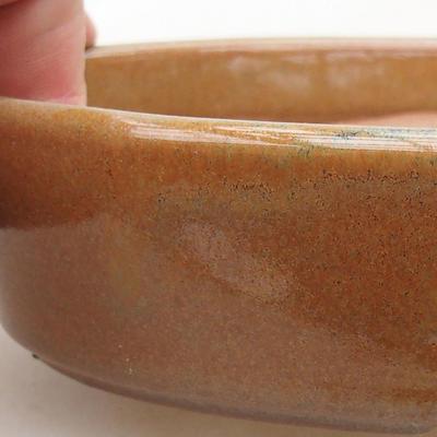 Ceramiczna miska bonsai 16 x 11,5 x 4 cm, kolor brązowy - 2