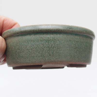Ceramiczna miska z bonsai - 2
