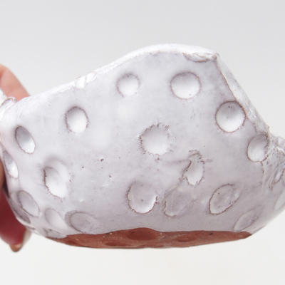 Ceramiczna skorupa - 2