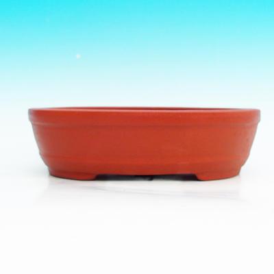 Bonsai bowl - tylko odbiór osobisty - 2