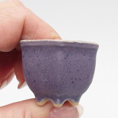 Mini miska z bonsai - 2