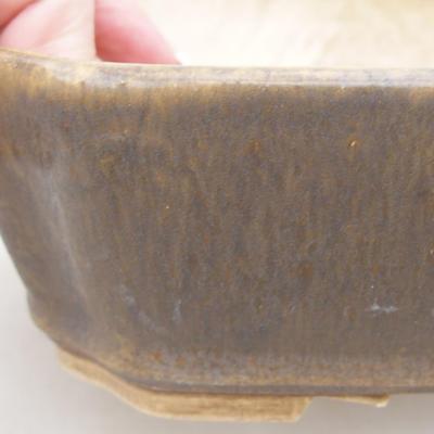 Ceramiczna miska bonsai 20 x 17 x 5,5 cm, kolor brązowy - 2