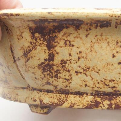 Ceramiczna miska bonsai 31 x 28 x 7,5 cm, kolor żółto-brązowy - 2