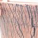 Ceramiczna miska bonsai 12,5 x 12,5 x 13 cm, kolor czarny - 2/3