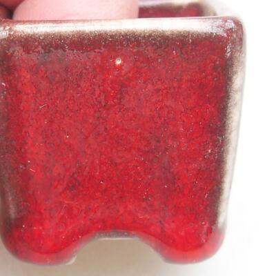 Mini miska bonsai 3 x 3 x 3 cm, kolor czerwony - 2