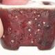 Mini miska bonsai 3,5 x 3,5 x 2,5 cm, kolor czerwony - 2/3