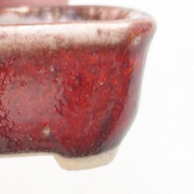 Mini miska bonsai 3 x 2,5 x 1,5 cm, kolor czerwony - 2