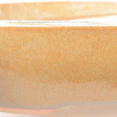 Ceramiczna miska bonsai 23 x 17,5 x 5 cm, kolor brązowy - 2