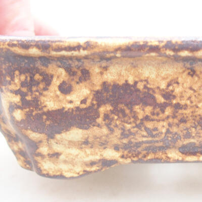 Ceramiczna miska bonsai 15 x 12 x 4 cm, kolor brązowo-żółty - 2