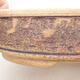 Ceramiczna miska bonsai 21 x 21 x 6 cm, kolor brązowy - 2/3