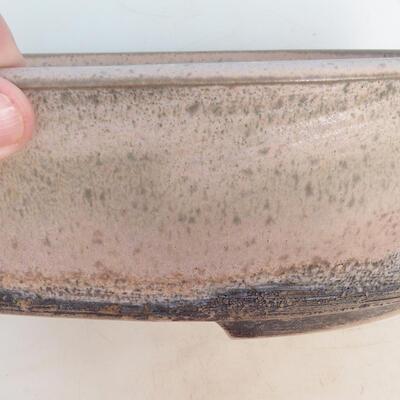 Miska Bonsai 29 x 23 x 8,5 cm, kolor szaro-beżowy - 2
