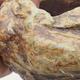 Ceramiczna skorupa 7 x 5,5 x 5,5 cm, kolor brązowo-zielony - 2/3