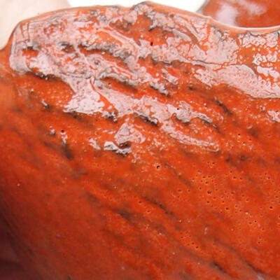 Powłoka ceramiczna 8 x 6 x 5 cm, kolor pomarańczowy - 2