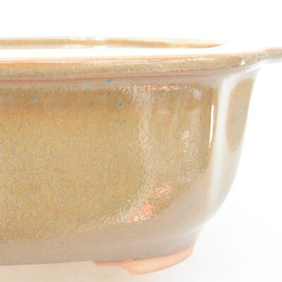 Ceramiczna miska bonsai 21 x 16,5 x 7 cm, kolor brązowy - 2