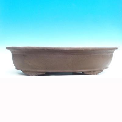 Miska Bonsai 59 x 38 x 12 cm - 2