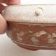 Ceramiczna miska bonsai 14 x 14 x 6 cm, kolor beżowy - 2/4