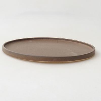 Spodek Bonsai H 21-21,5 x 21,5 x 1,5 cm - 2