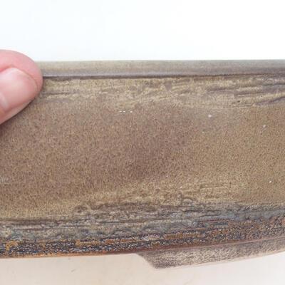 Miska Bonsai 35,5 x 27,5 x 8 cm, kolor brązowy - 2