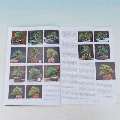 Bonsai i ogród japoński nr 54 - 2