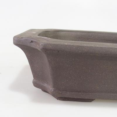 Miska Bonsai 30 x 22 x 8 cm - 2