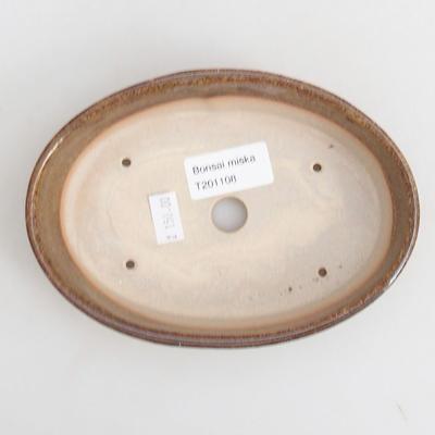 Ceramiczna miska bonsai 16 x 11 x 4 cm, kolor brązowy - 3
