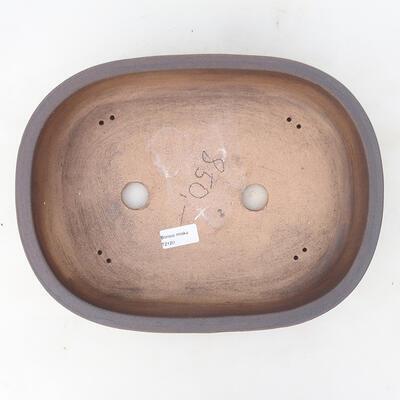 Miska Bonsai 42 x 22 x 11,5 cm, kolor szaro-beżowy - 3