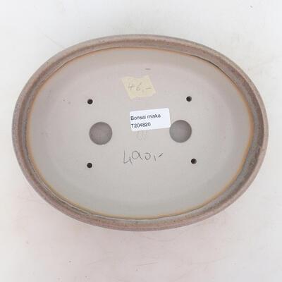 Miska Bonsai 22 x 17 x 6 cm, kolor szaro-beżowy - 3