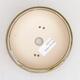 Outdoor bonsai - grab - Carpinus betulus - 3/5